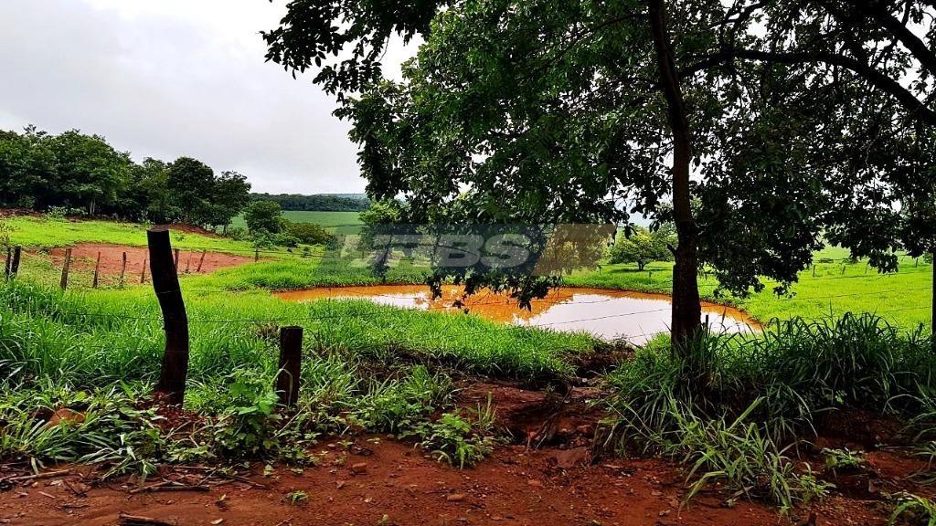 fazenda à venda, 3388000 m² por r$ 4.200.000,00 - dona fíica - goianésia/go - fa0022