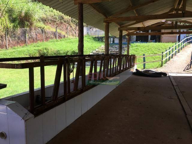 fazenda à venda, 400000 m² por r$ 1.795.500 - souzas - monteiro lobato/sp - fa0004