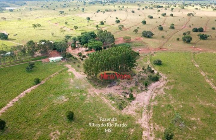 fazenda à venda, 4.772,00 hectares por r$ 47.000.000 - centro - ribas do rio pardo/ms - fa0023