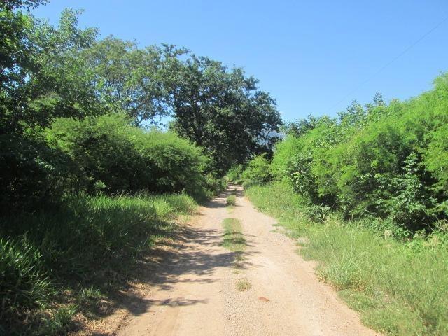 fazenda à venda corumbá - ms - fa0224