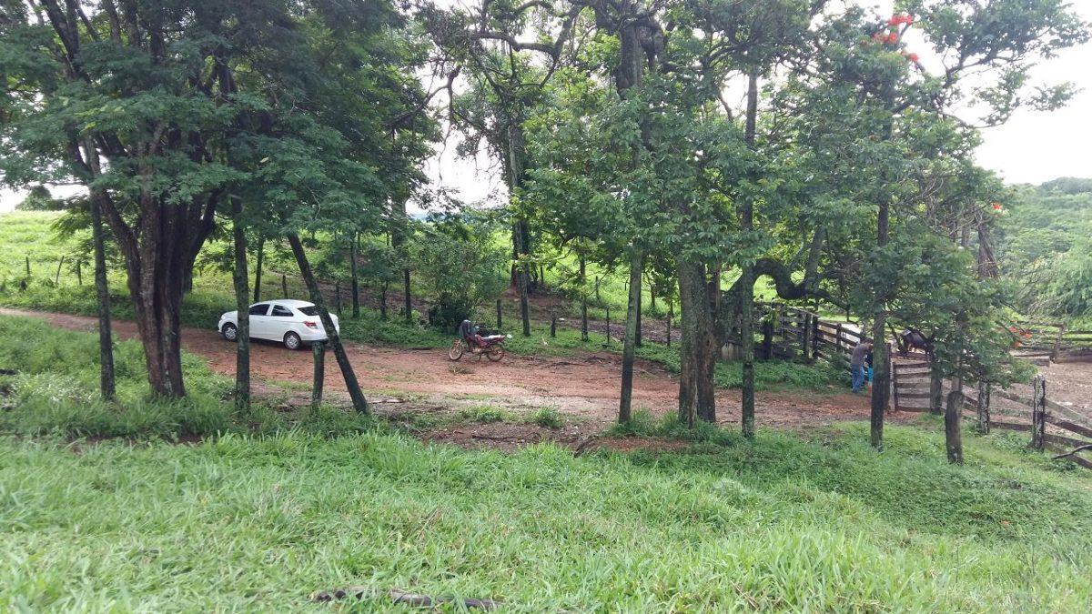 fazenda à venda em bonfinópolis
