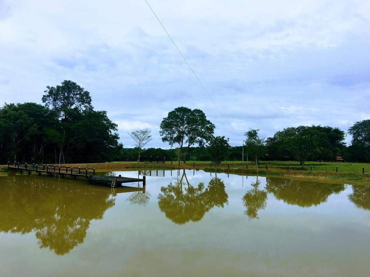 fazenda à venda, plano diretor sul - palmas/to - 524