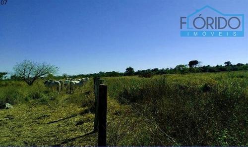 fazendas à venda  em santa terezinha/mt - compre o seu fazendas aqui! - 1392774