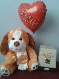 feliz dia amor : peluche - chocolate y globo : delivery