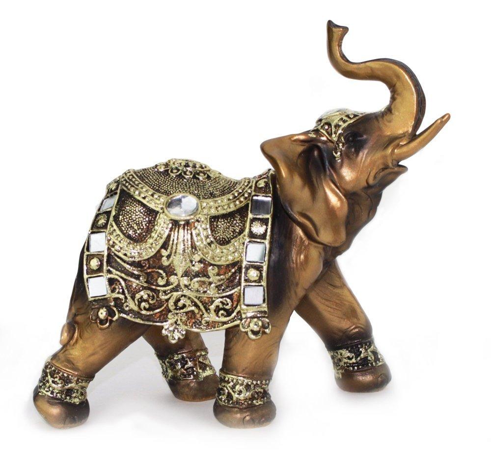 Encantador Elefante Anatomía Del Tronco Imágenes - Anatomía de Las ...