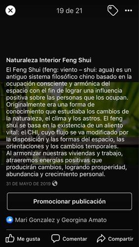 feng shui asesoría