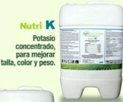 fertilizante abono de origen organico pimenton cebolla maiz