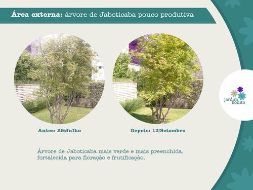 fertilizante adubo npk foliar jardim bonito chorume concentr