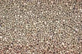 fertilizante fosfato diamónico - 1 kg