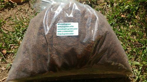 fibra de coco substrato plantas 12 l #frutashugreen