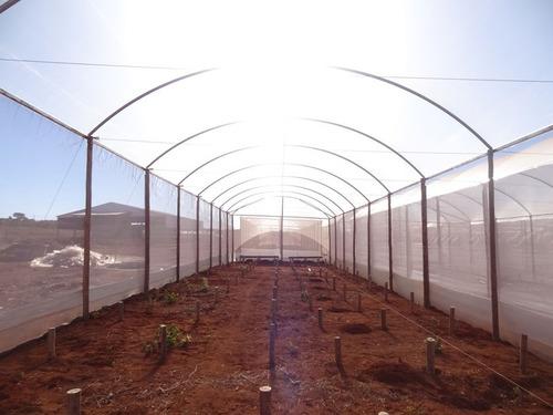 filme plastico para estufa agricola 8m x 30m  100 micras tp
