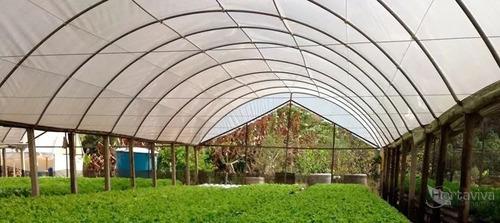 filme plastico para estufa agricola 8m x 60m - 100 micras