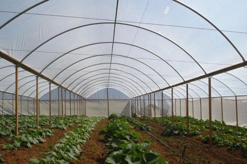filme plastico para estufa horta agricola 6m x 10m  150micras