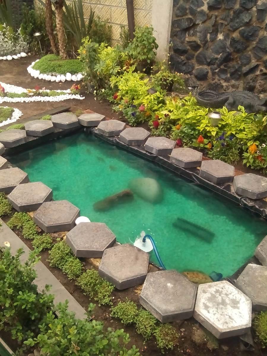 Filtro para acuario o pecera 1 en mercado libre for Peceras para tortugas