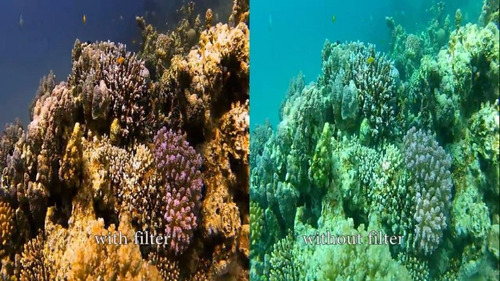 filtro rojo subacuatico gopro buceo hero 3 4 5 6 session