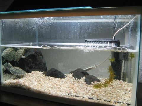 Filtro sumergible para acuario hj 311b 300 l h bs 381 for Filtro para estanque de tortugas