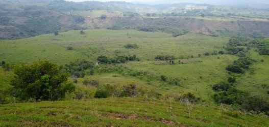 finca 100 hectáreas para explotación ganadera ó agricola