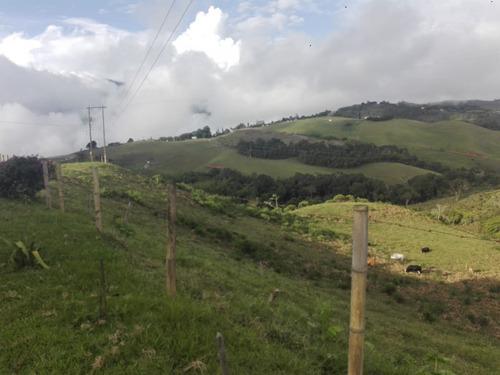 finca 140 plazas ganadera y agrícola en  restrepo valle