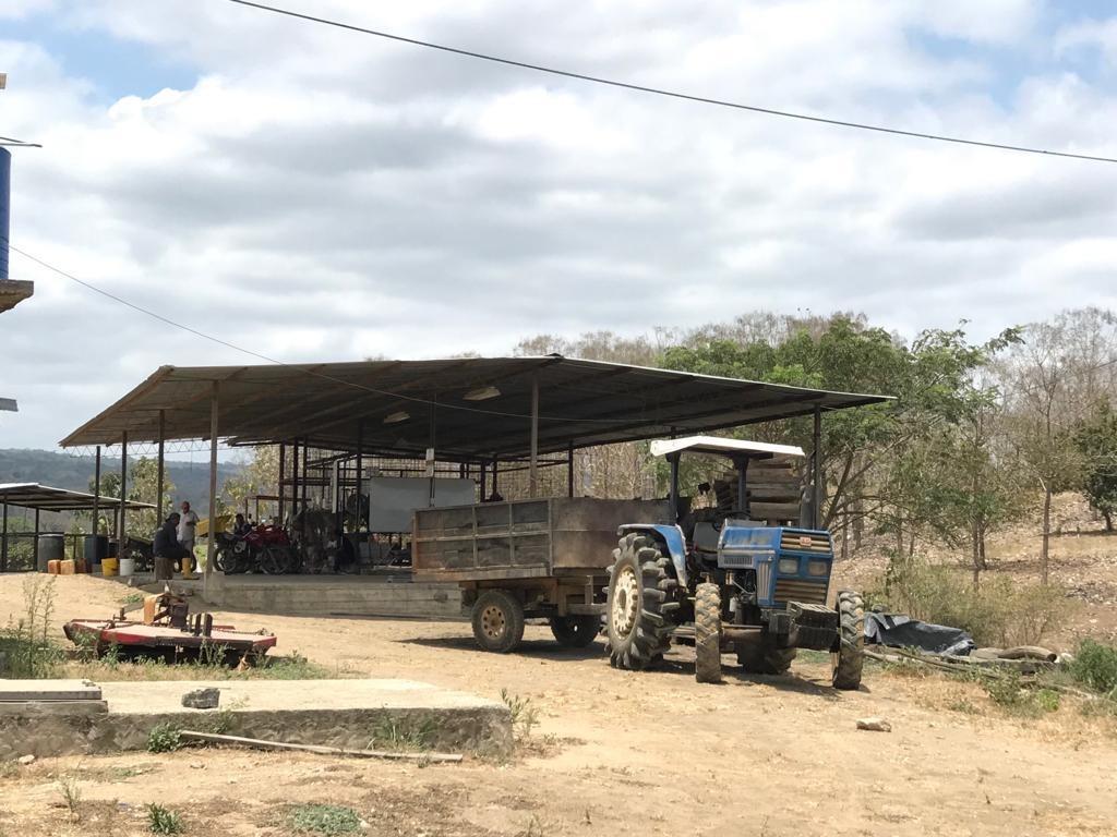 finca 60ha vía la costa por limoncito 53ha cacao producción
