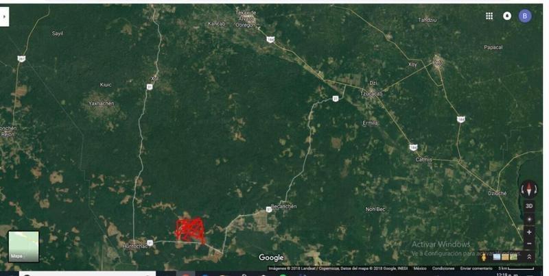 finca agrícola con excelente tierra para cultivo, al sur del estado.