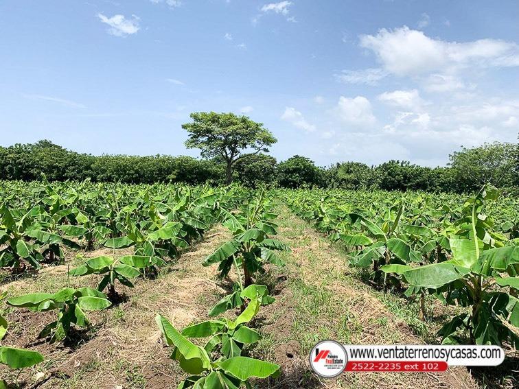 finca agricola en venta en potosi-rivas