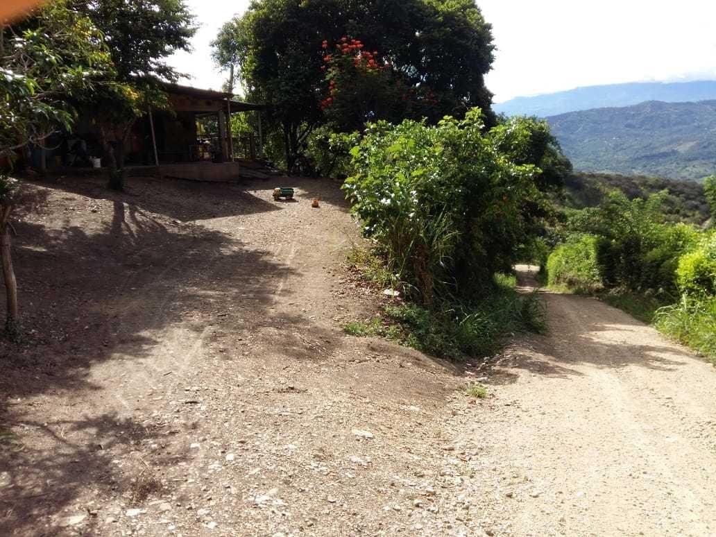 finca de 1 hectárea, con árboles frutales y casa