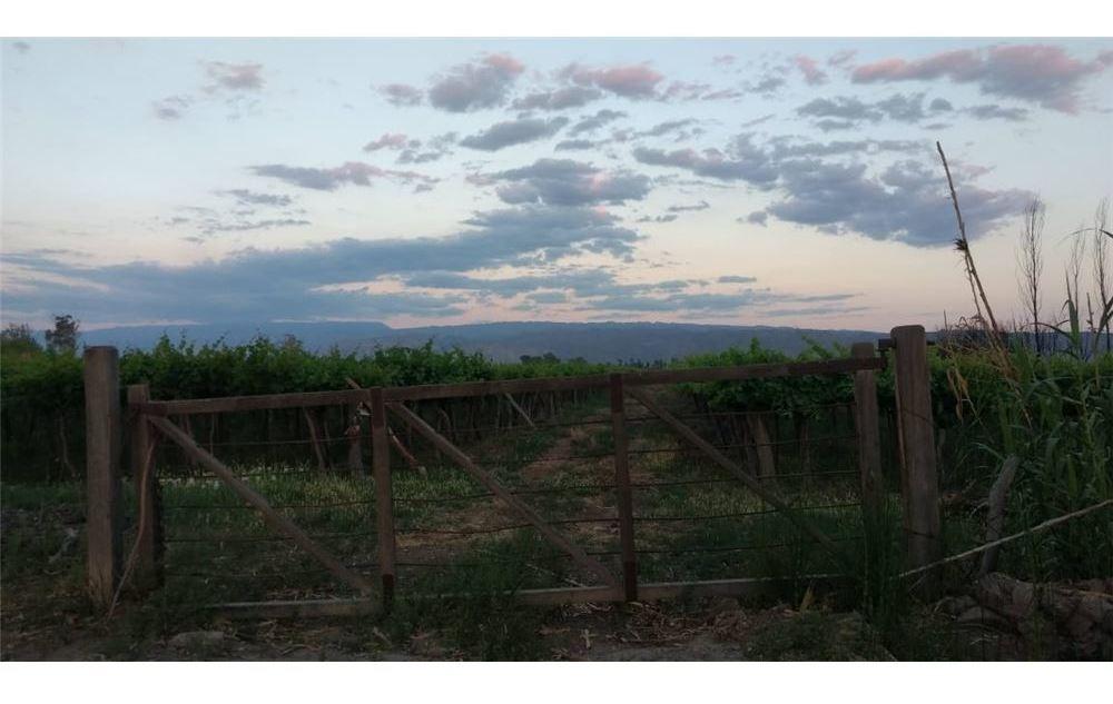 finca de 15 hectáreas aprox. en san martín