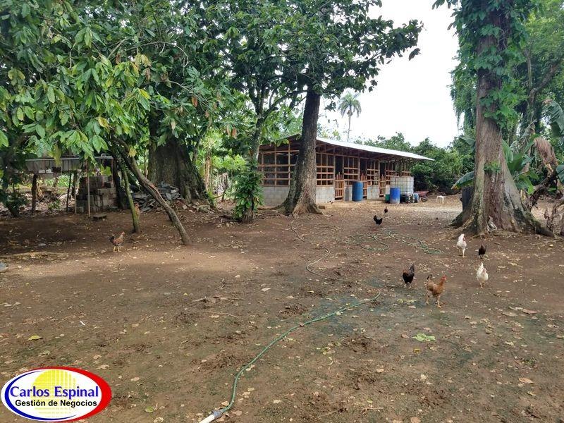 finca de 25 tareas en venta en bonao, república dominicana