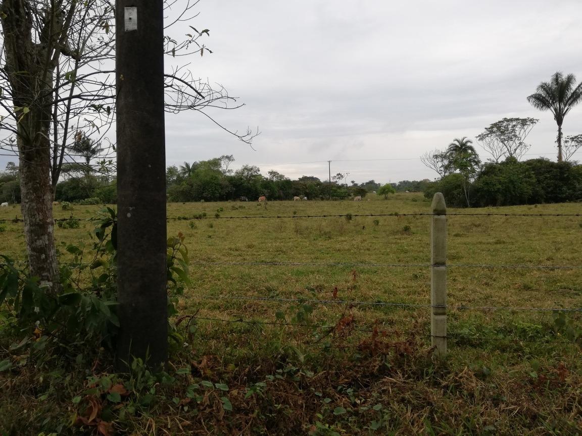 finca de 29 hectáreas en restrepo meta