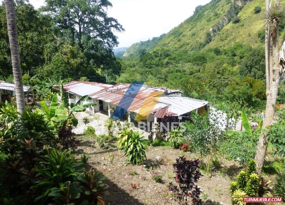 finca de 4 hectáreas en chamita merida, venezuela.