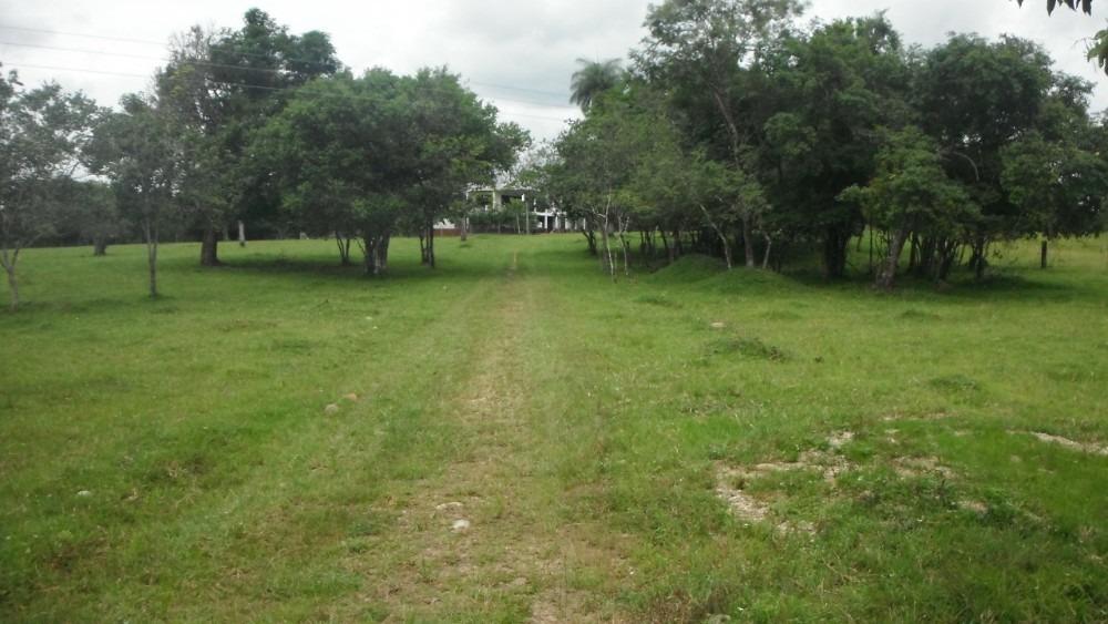 finca de 40 hectáreas en monterrey, casanare