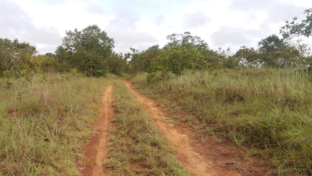 finca de 400 hectareas apta para pastos, cacao, caucho, palm