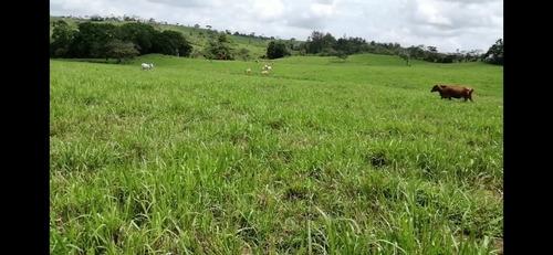 finca de 51 hectáreas y media