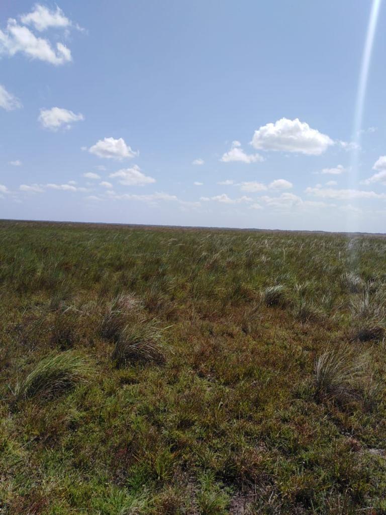 finca de 5500 hectáreas en el departamento del vichada