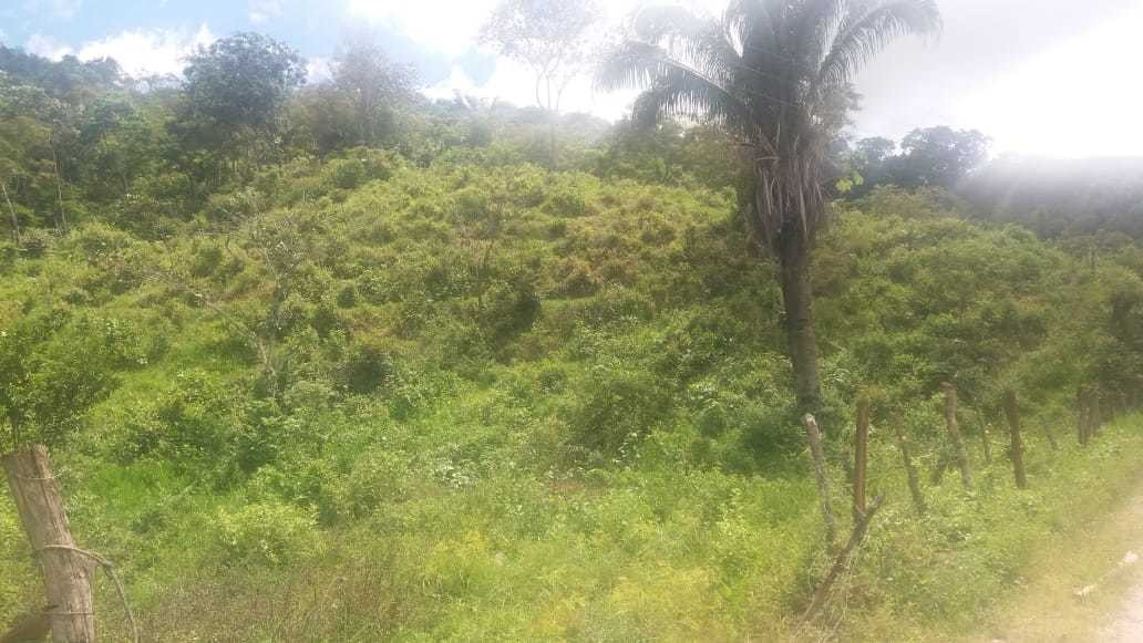 finca de 9 hectáreas entre la vía de prado y dolores