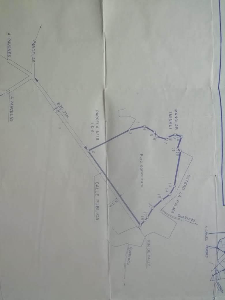 finca de 9.5 hectáreas, uso múltiple