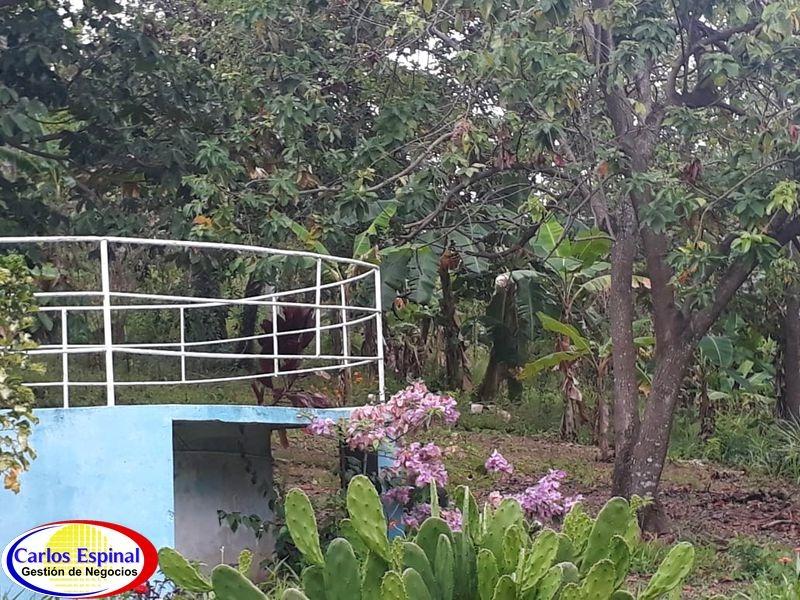 finca de venta en la altagracia, republica dominicana tv-051