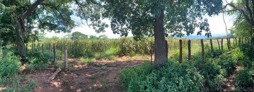 finca en villanueva guajira 56 hectáreas