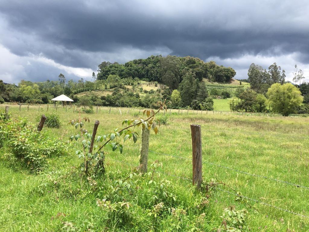 finca entre villa de leyva y arcabuco