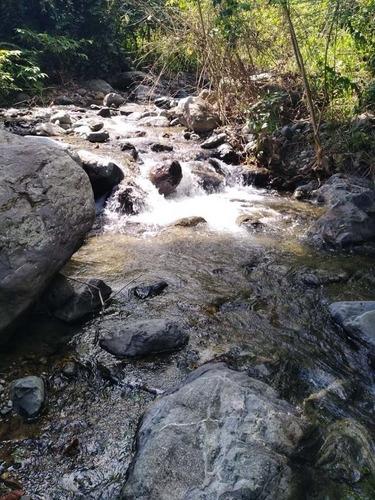 finca ganadera 276 plazas florida valle del cauca