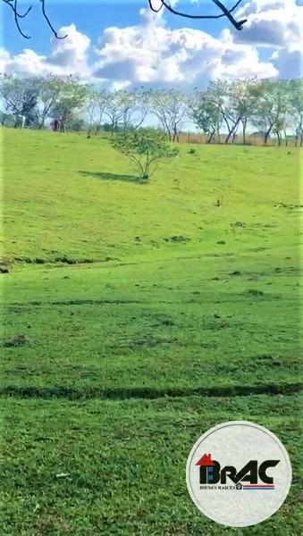finca ganadera o agricultura en venta el seibo