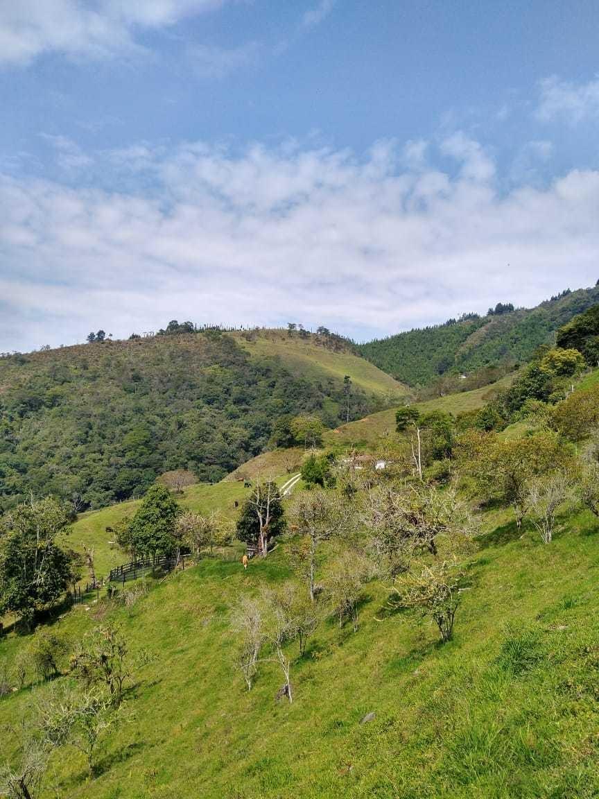 finca ganadera y agrícola barbosa- antioquia cerca de medell