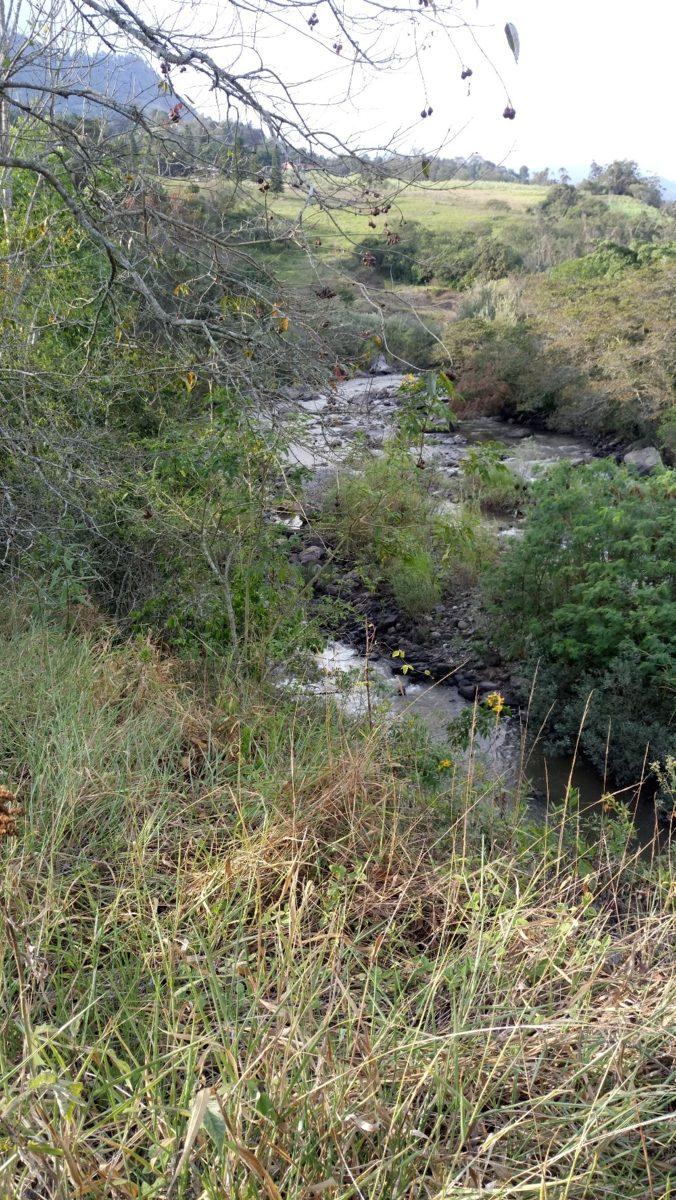 finca lindero con el rio blanco y otras