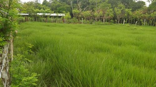 finca modelo 8.6 hectareas