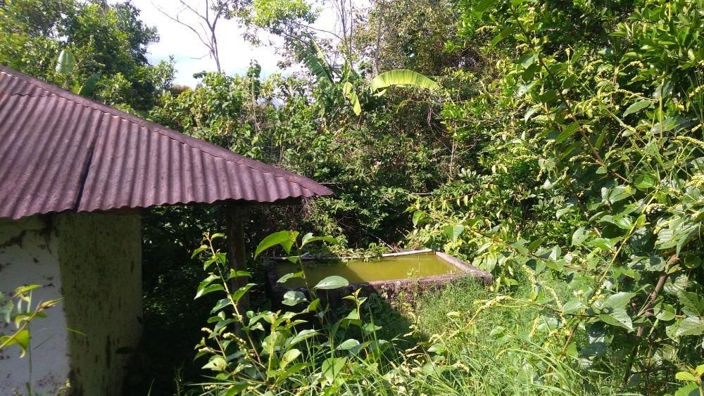 finca para cultivo de cafe o citricos