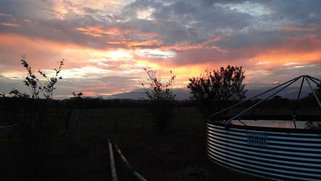finca para ganadería o cultivo variado