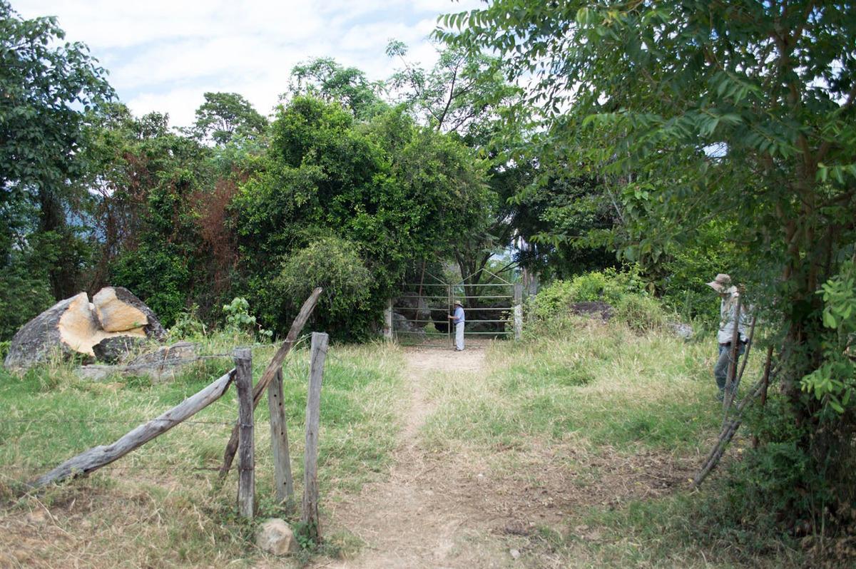 finca productora 15 hectáreas nilo cundinamarca