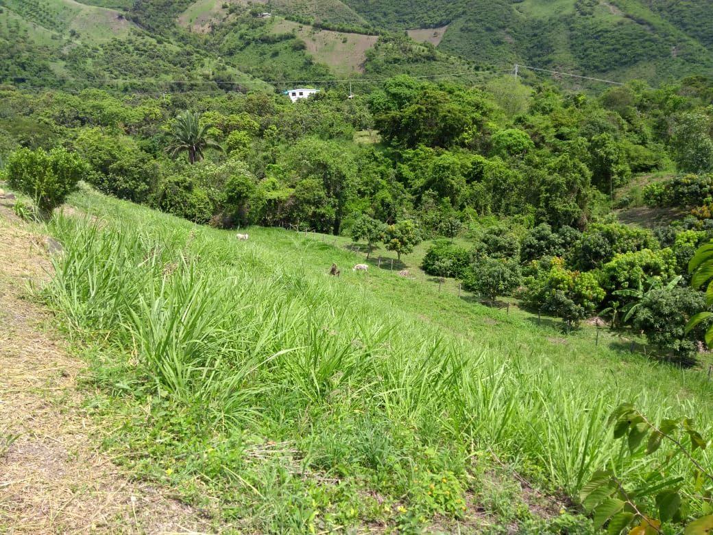 finca rural 3 alcobas 2 baños 12000ltros de agua de recerba