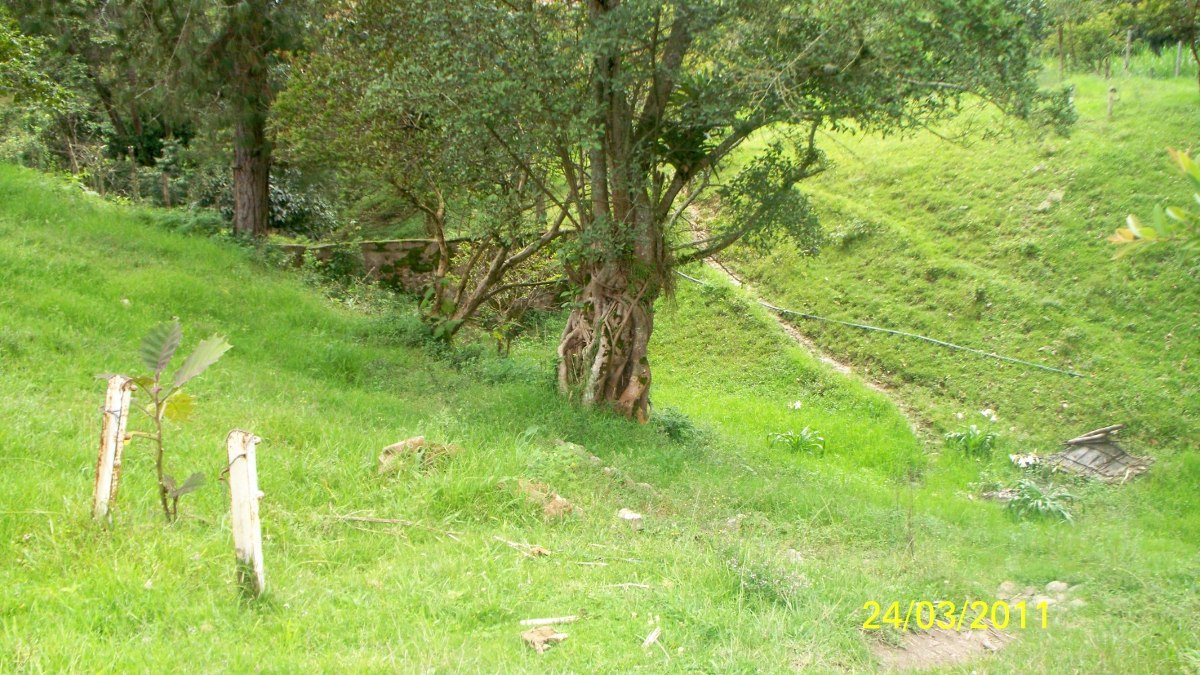 finca silvania - cundinamarca