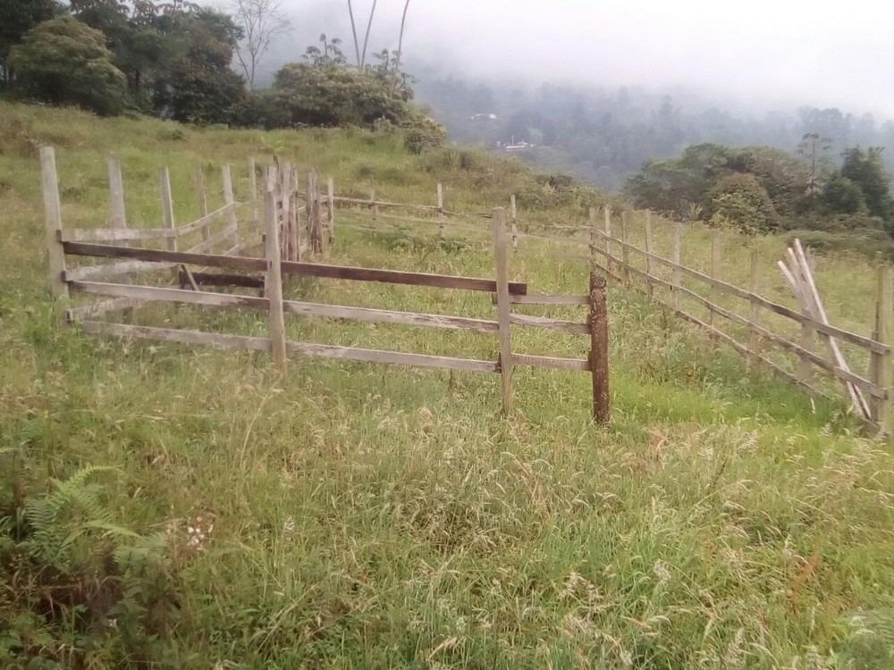 finca via principal entre fusagasuga y sibaté